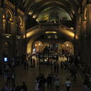 Photograph of the Natural History Museum