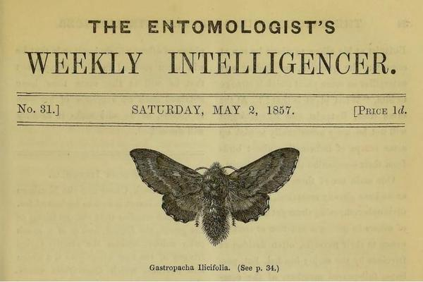 Title page from The Intelligencer