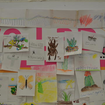 Photograph of drawings from the event